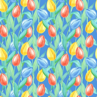 Aquarel voorjaar naadloze patroon met gele, rode, blauwe tulpen. bloemen op een blauwe achtergrond.