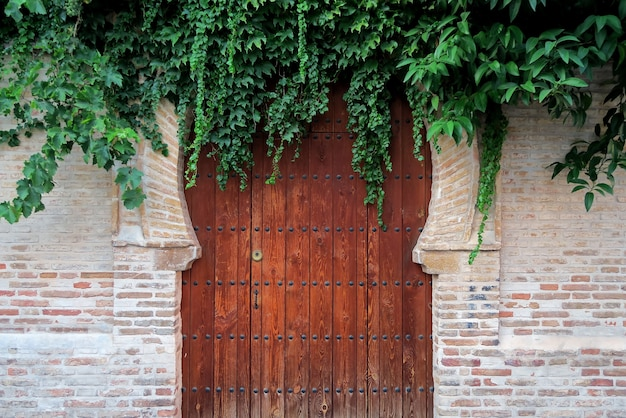 Arabische deur vol vegetatie van een oud huis