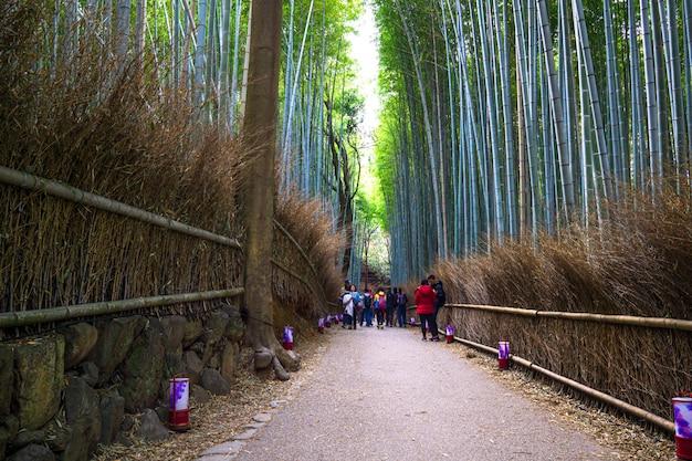 Arashiyama bamboo grove, district aan de westelijke rand van kyoto, japan