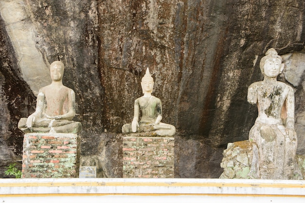 Architectuur danang teken boom mooi vietnam
