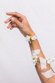 Arm met gepleisterde madeliefjebloemen