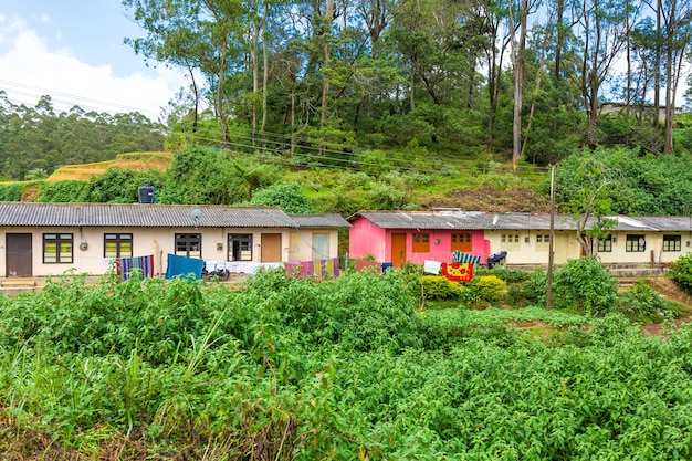 Arme vervallen huizen van de bewoners van het eiland sri lanka. jungle accommodatie.