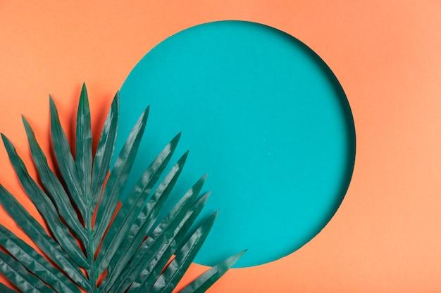 Artistieke papieren cirkel met blad