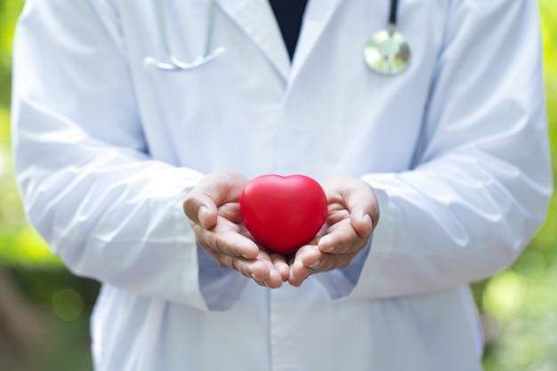 Arts die en rood hart in twee handen houdt geeft