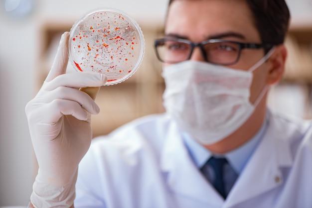 Arts die virusbacteriën in het laboratorium bestudeert