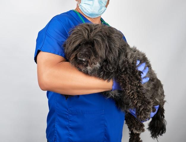 Arts in blauwe uniforme en steriele latexhandschoenen met een pluizige zwarte hond