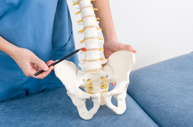Arts met een pen die een hernia in een skelet aan een patiënt toont.