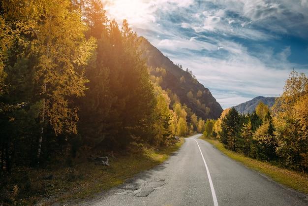 Asfalt bergweg tussen de gele herfst bomen en hoge rotsen, in de felle stralen van de zon. roadtrip naar de mooiste plekken van rusland