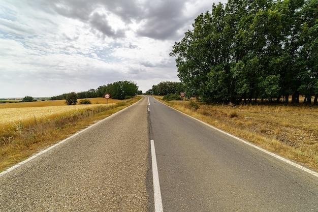 Asfalt landweg in perspectief aan de horizon met bomen en wolken aan de hemel.
