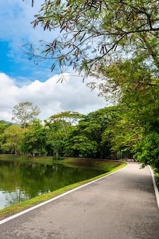 Asfalt zwart grijze weg landschap uitzicht op het meer op ang kaew chiang mai universiteit in de natuur bos uitzicht op de bergen lente blauwe hemel met witte wolk.