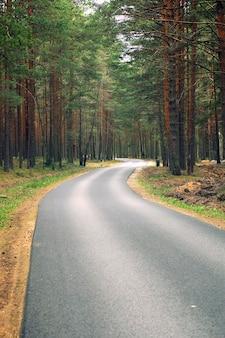 Asfaltpad, weggaand, een dennenbos aan beide zijden, een plek om te fietsen en uit te rusten.