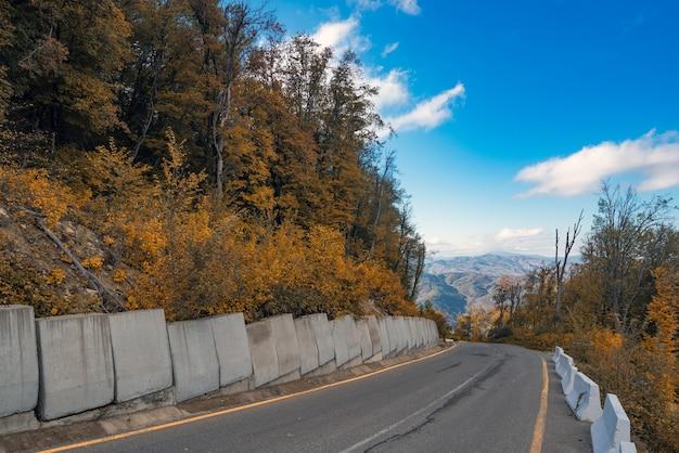 Asfaltweg in bergachtig gebied in de herfst