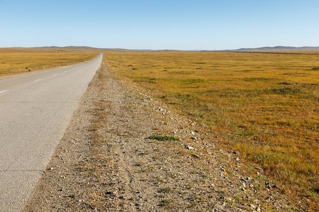 Asfaltweg in de mongoolse steppe