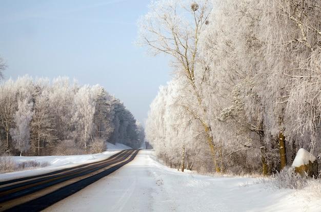 Asfaltweg in de winter Premium Foto
