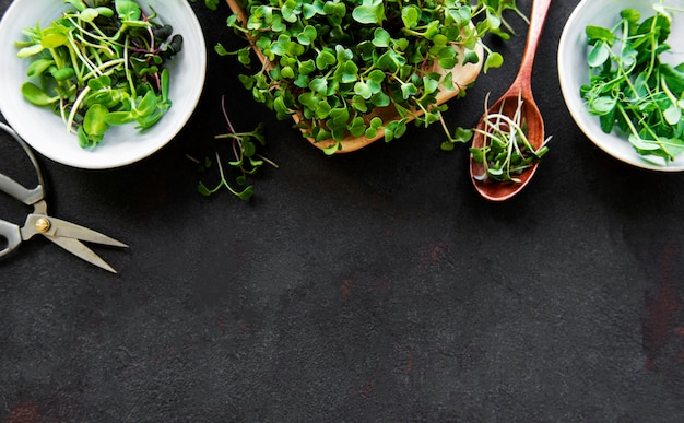 Assortiment microgreens
