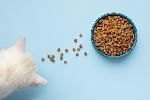 Assortiment stillevens voor huisdieren