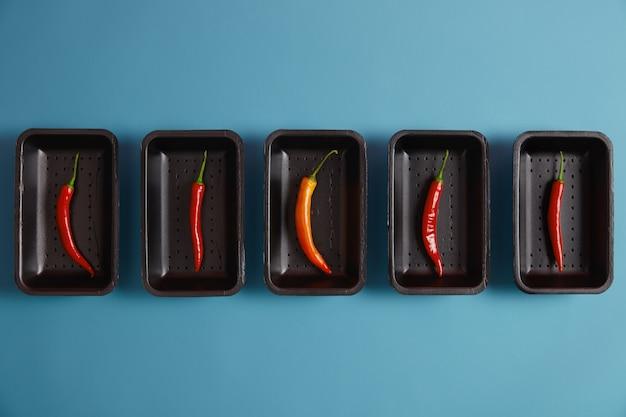 Assortiment van rode en een oranje chilipeper, verpakt op zwarte dienbladen in de markt, geïsoleerd op blauwe achtergrond, kan als specerijen aan uw gerecht worden toegevoegd. warmteproduct. kruiden en koken concept