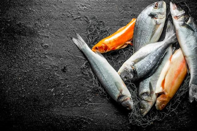 Assortiment van verschillende verse vis op het visnet. op zwarte rustiek