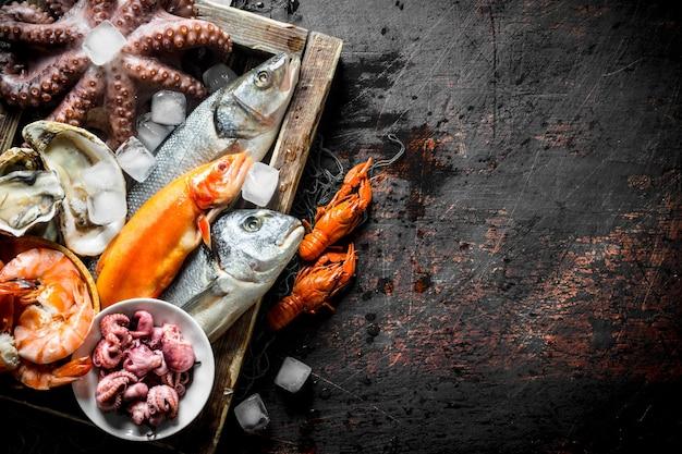 Assortiment van verschillende zeevruchten op dienblad met ijsblokjes. op donker rustiek