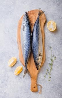 Atlantische bonito sarda of palamida dat grote makreelachtige vis is