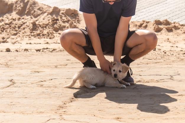 Atletische jongen die zijn puppy aait die in het zand ligt.