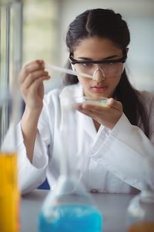 Attent schoolmeisje experimenteren in laboratorium