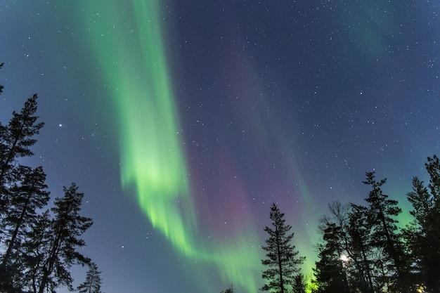 Aurora borealis in de nachtelijke hemel
