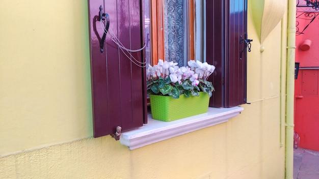 Authentiek venster met groene luiken in mediterraan stijl oud venster tegen steenmuur