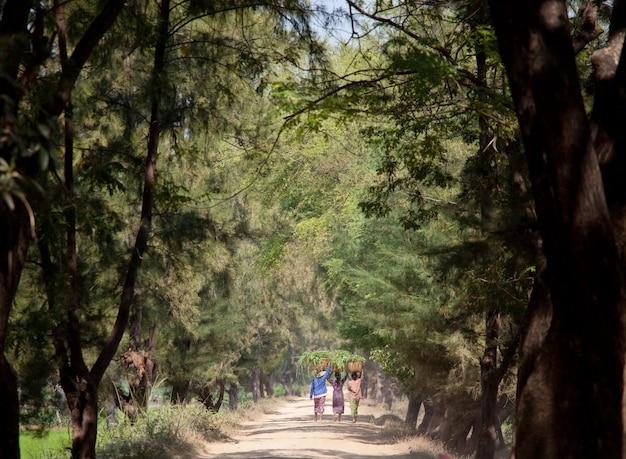 Authentieke lokale vrouw die op landelijke weg loopt