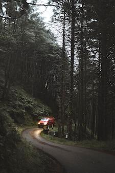 Auto rijdt door gematigd regenwoud van mull