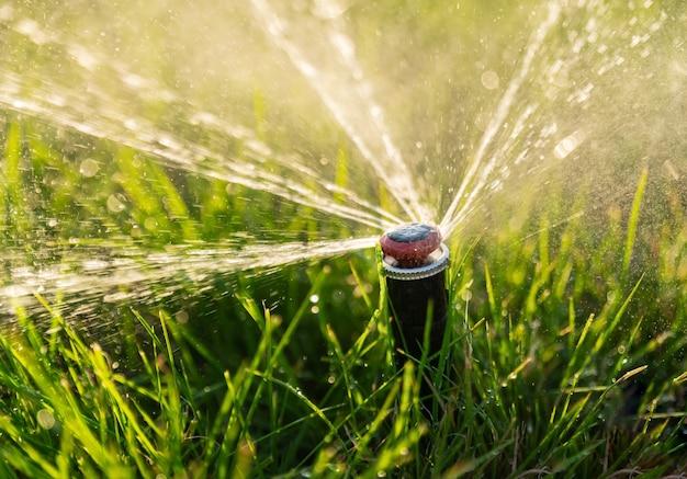Automatisch irrigatiesysteem. watersproeier voor het irrigeren van een gazon.