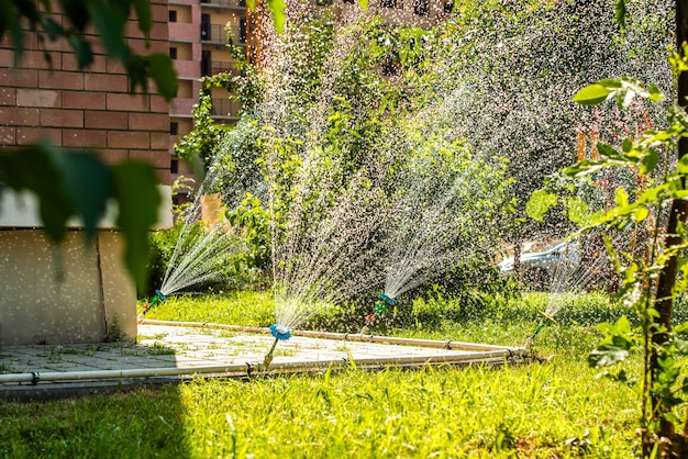 Automatische sproeiers voor het besproeien van gras, bloemvormig. het gazon wordt in de zomer bewaterd. handig voor thuis