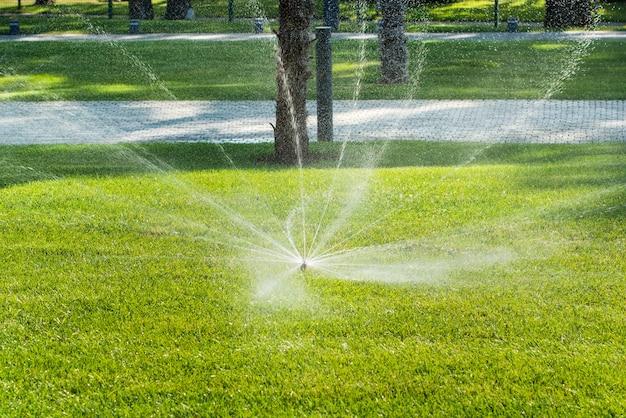 Automatische sproeiers voor het besproeien van gras. het gazon wordt in de zomer bewaterd. handig voor thuis