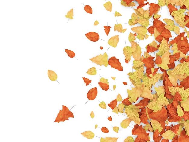 Autumn leaves geïsoleerd
