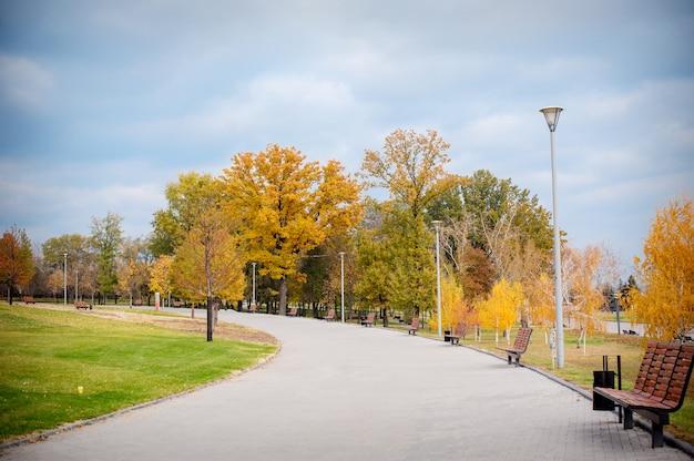 Autumn scenery of park alley met struiken en bomen op groen gras