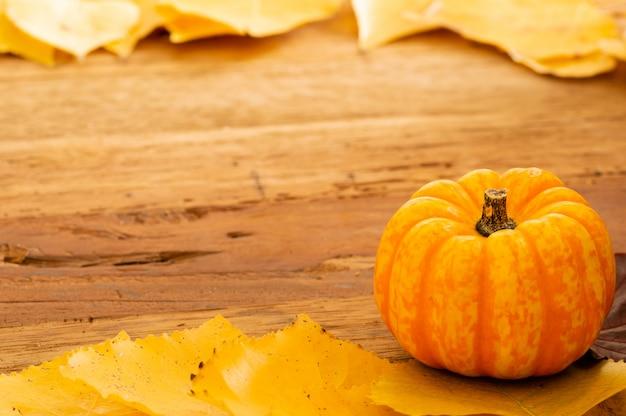 Autumn thanksgiving background met oranje pompoenen en gevallen bladeren op houten lijst
