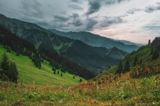 Avond berglandschap in butakovskoe kloof almaty, kazachstan, zailiysky alatau range, forest pass bij bewolkt weer.