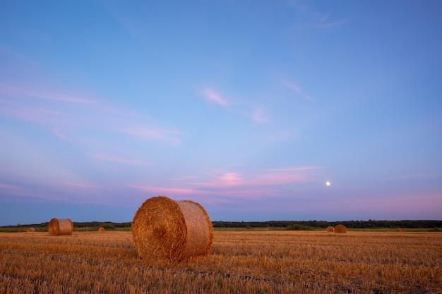Avondfoto tijdens het blauwe uur van strobalen met opkomende maan op de achtergrond
