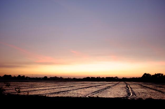 Avondlucht - landelijke gebieden - landbouwpercelen.