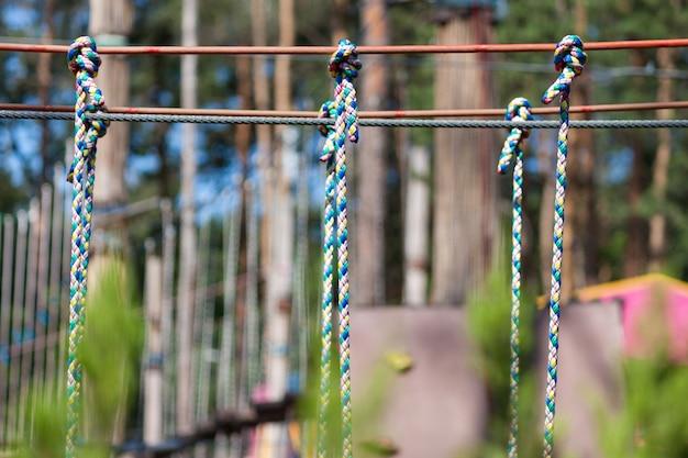 Avontuurlijk klimmen op een hoog bedraad park. bos avonturenpark tussen pijnbomen.