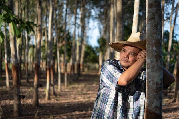 Aziatische boer landbouwkundige ongelukkig van lage opbrengstproductiviteit bij rubberboomplantage