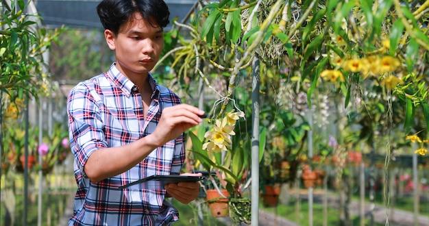 Aziatische boer met behulp van digitale tablet voor controlegegevens in de orchideeënkwekerij