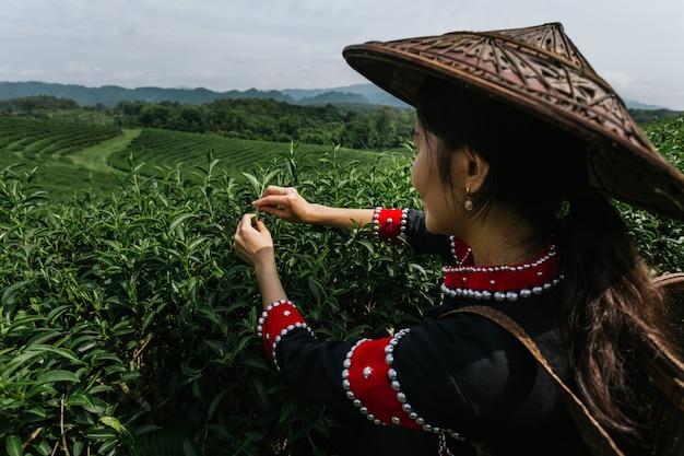 Aziatische boer werkt in de weelderige velden van een terrasvormige boerderij.
