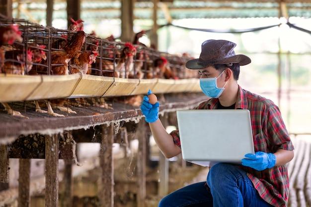 Aziatische boeren inspecteren en registreren de kwaliteitsgegevens van de kippeneieren met een laptop in de kippenboerderij.