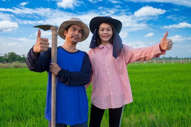 Aziatische boeren koppelen hulpmiddelen en duim omhoog in rijstkwekerij