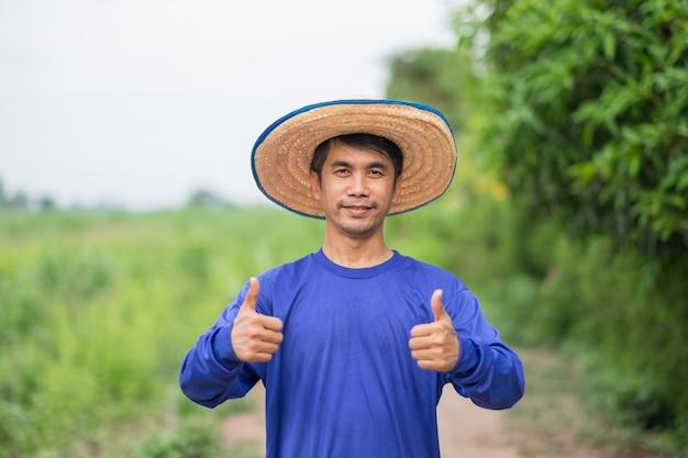 Aziatische boerenman draagt een blauwe t-shirtglimlach en staande duim omhoog bij maïsboerderij