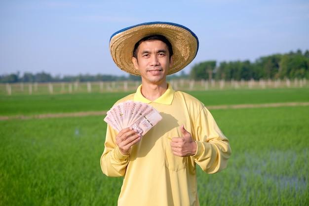 Aziatische boerenman draagt een gele overhemdglimlach en houdt thais bankbiljet vast op een groene rijstboerderij.