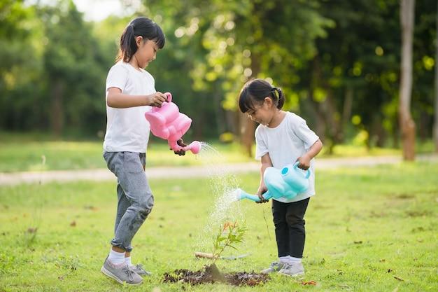 Aziatische broer of zus die jonge boom water geeft op zomerdag