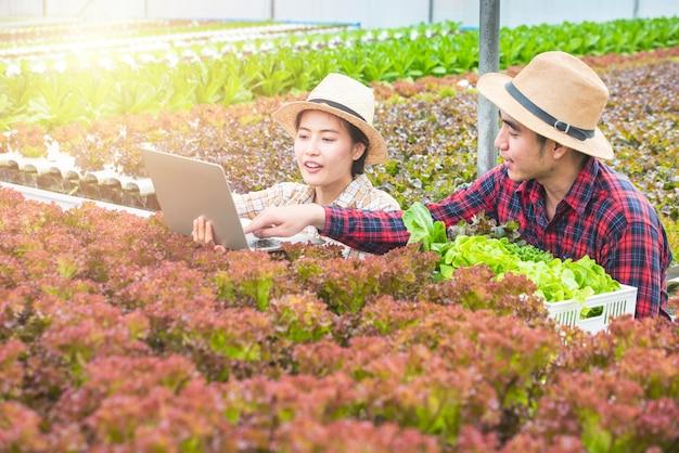 Aziatische het gebruiklaptop van de vrouwenlandbouwer en bespreking met aziatische man de testreeks van de tuinmangreep, zij zijn het werk met groepswerk