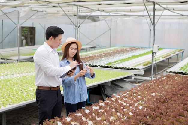 Aziatische inspecteurs inspecteren en registreren de kwaliteit van biologische groenten in hydrocultuurkwekerijen, waarbij vrouwelijke boeren begeleiding bieden tijdens de inspectie voor export naar de markt.